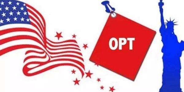如何申请OPT
